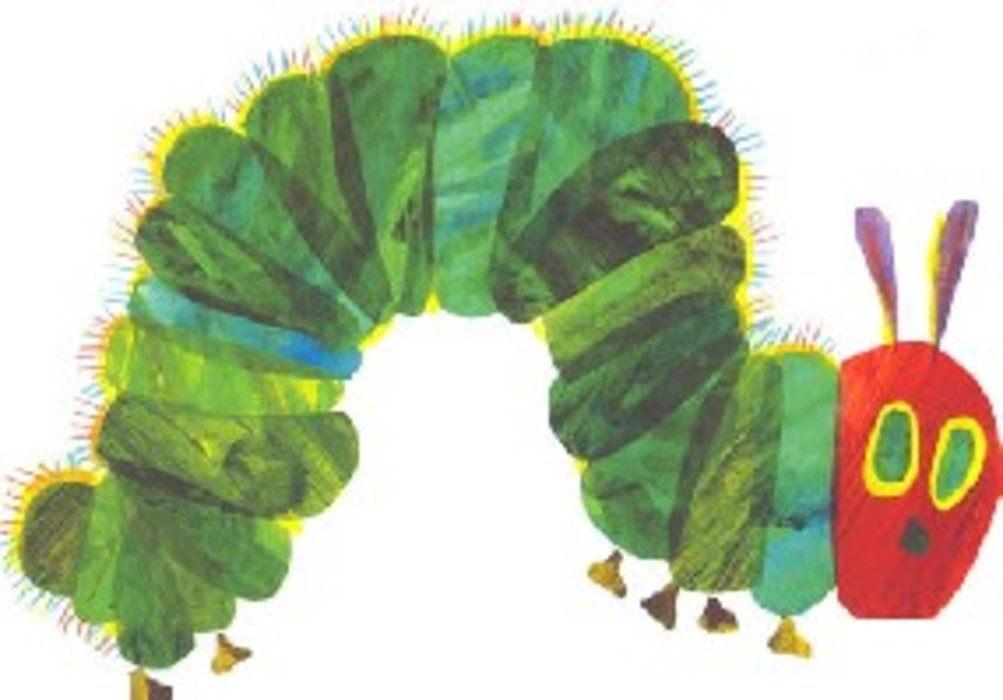 Caterpillar Postcard