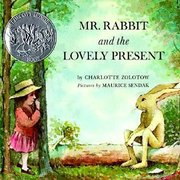 Mr. Rabbit and the Lovely Present - Hardcover