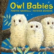 Owl Babies (Board Book)