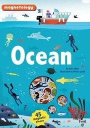 Ocean Magnetology
