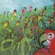 Brian Wildsmith Card - A Company of Parrots