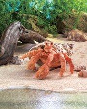 Hermit Crab Puppet