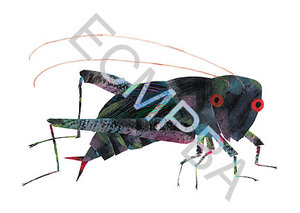 Cricket Limited Edition Print