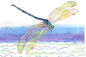 Eric Carle Postcard - Dragonfly