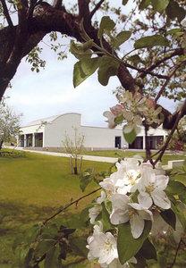 Carle Museum Postcard - Apple Orchard