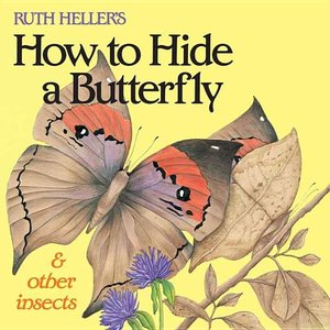 How to Hide a Butterfly