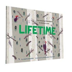 Lifetime (Softcover)