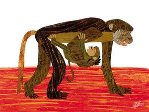 Monkey Mother Canvas Wall Art