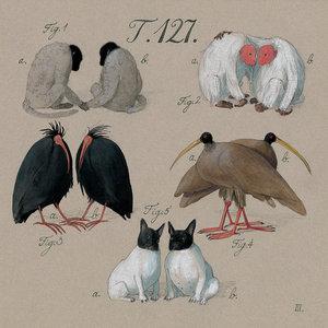 Lisbeth Zwerger Postcard - Noah's Ark Animals