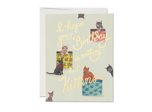Card-Nothing But Kittens