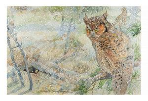 Jerry Pinkney Postcard - Owl