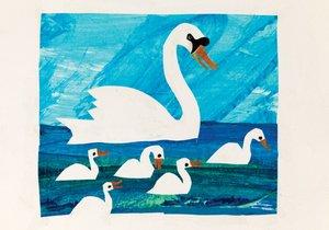 Postcard-Swan Mother