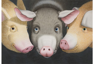 David Wiesner Postcard - The Three Pigs
