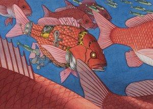 Flotsam Fish Notecard