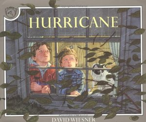 Hurricane (Softcover)
