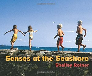 Senses at The Seashore