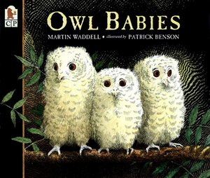 Owl Babies (Softcover)