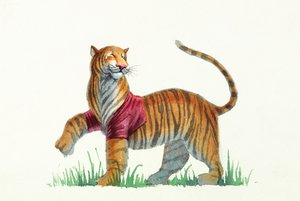 Fred Marcellino Postcard - Tiger