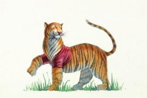 Fred Marcellino Postcard - Tiger