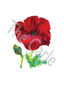 Poppy Limited Edition Print