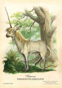 Tony DiTerlizzi Postcard - Unicorn