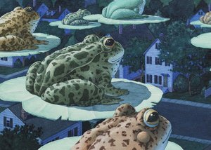 Tuesday Frogs Notecard